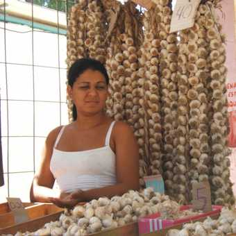 Camaguey market, garlic seller
