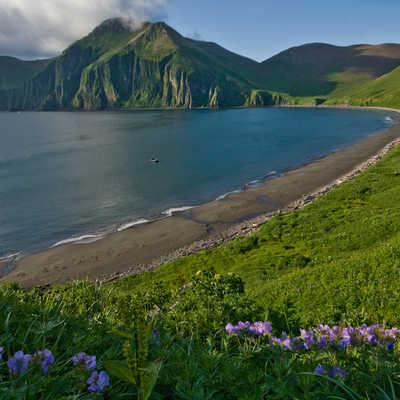 Commander Islands, Russia