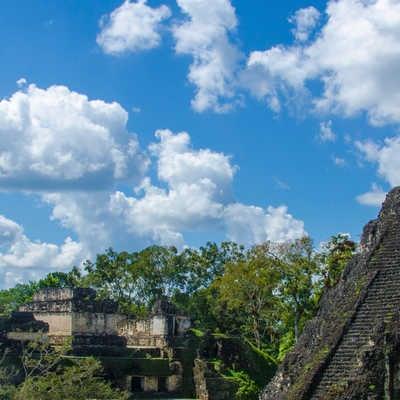 Tikal Ruins and pyramids, Guatemala