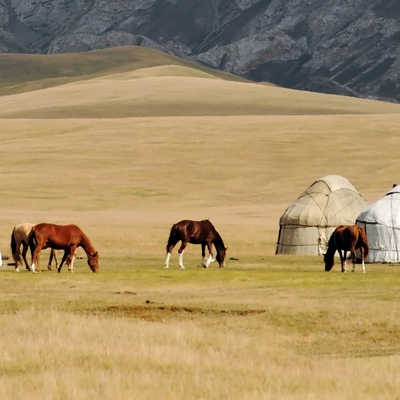 Horses and yurts in the Tien Shan Mountains
