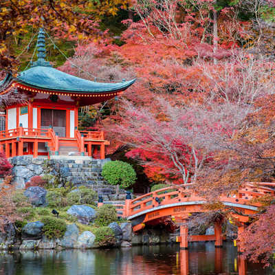 Autumn arrives in the temple gardens, Japan