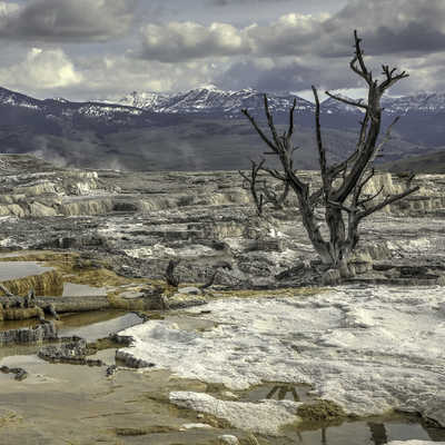 Landscape from Mammoth Hot Springs, Yellowstone National Park, Wyoming