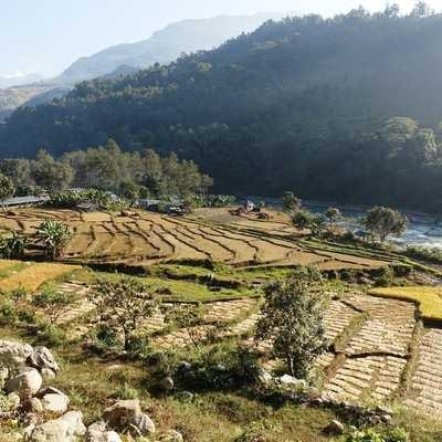 Agricultural terraces en route from Arughat to Lapu Besi, Manaslu Circuit, Nepal