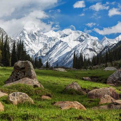 Wild pastures, Kyrgyzstan