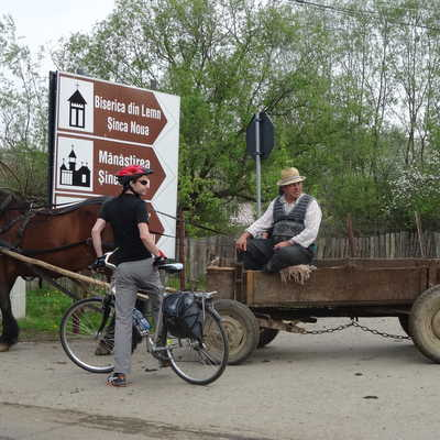 Local horse & cart