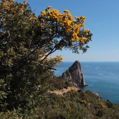 Towards Pedra Longa Pinnacle