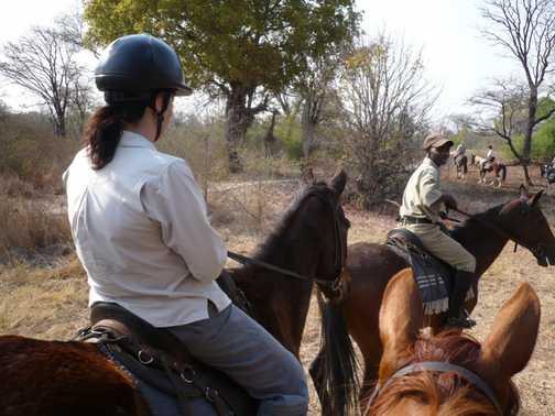 Horseriding along the Zambezi - Livingstone, Zambia