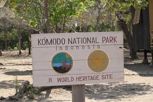 Komodo - bird
