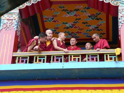More monks at Rumtek Monastery!