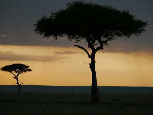 Masai Mara sunset 1