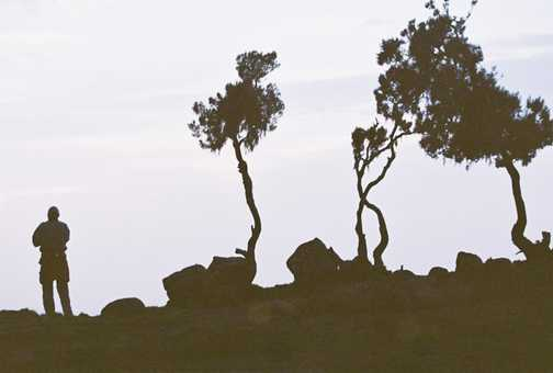 Dusk in Simien Mountains