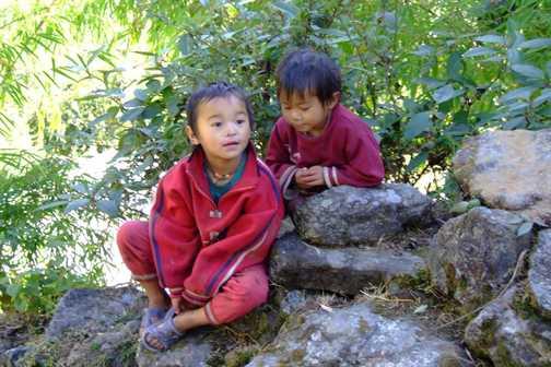 Nepali Munchkins