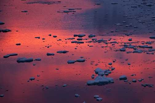 Dawning light reflected in Neko harbour