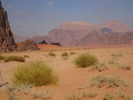 Beautiful colours - Wadi Rum