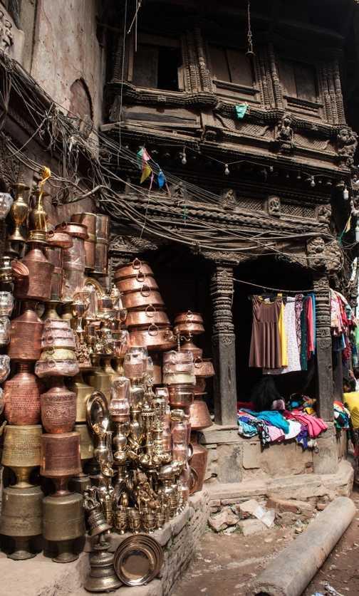 Temple monkey, Pashupatinath