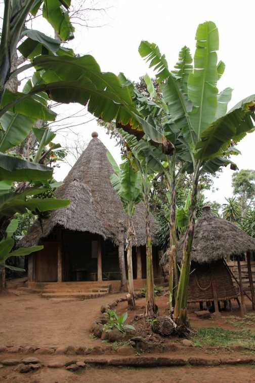 Chaga museum