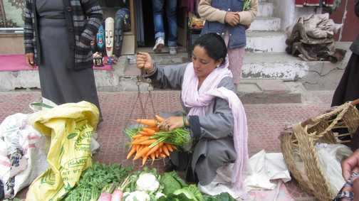 Weighing carrots for the donkeys