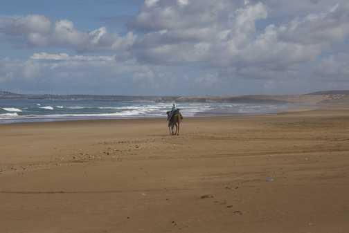 Hitching a ride on a camel- Sidi Kaouki beach walk