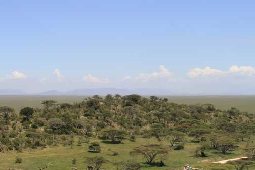 view over Serengeti from Babboon Cliffs