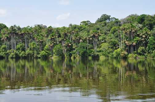 oxbow lake