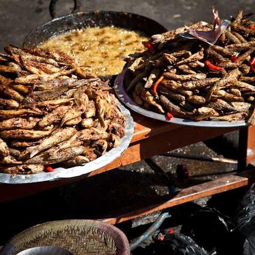 Delicious meal at Cafe Kilroys, Kathmandu, Nepal