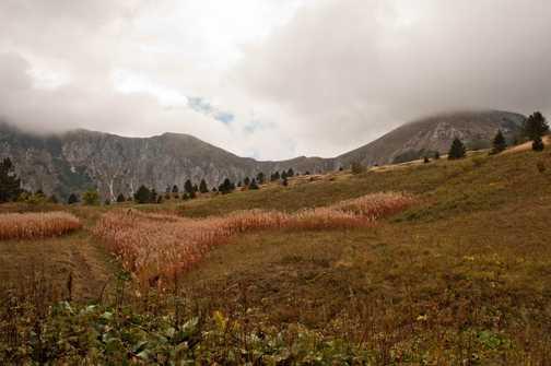 en route to Ugljesin Peak