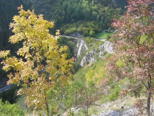 Autumn in Buinovo Gorge_2