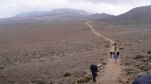 Down on Marangu Route