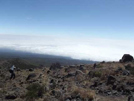 Above the clouds on Kili