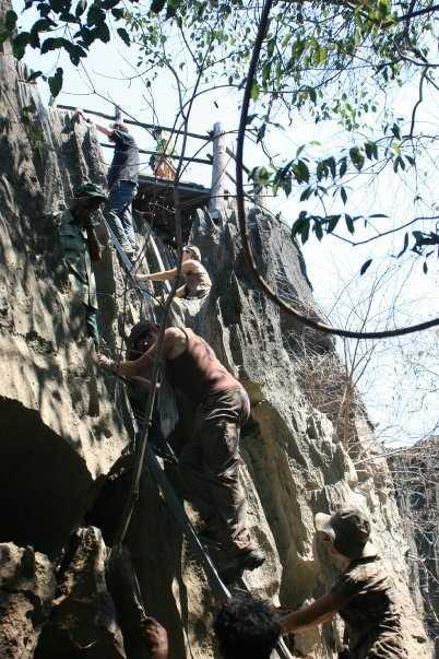 Ladders in Tsingy