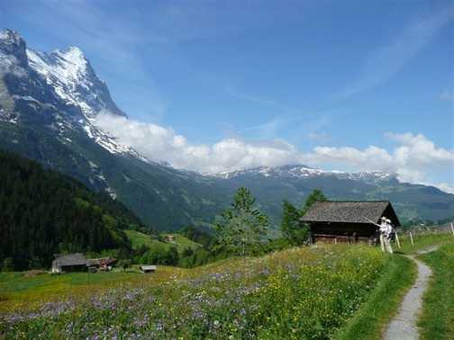 Grindlewald and Eiger