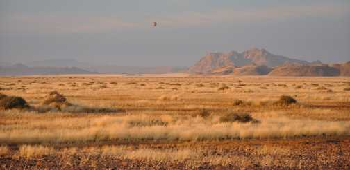 Balloon flight over the Namib Desert