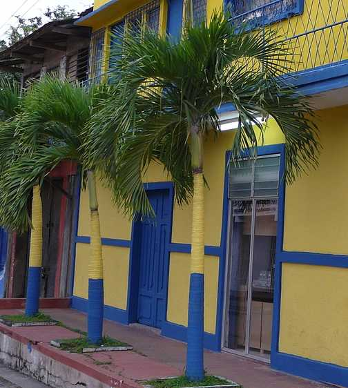 Painted palms