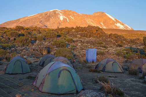 Kibo Tents and Tardis
