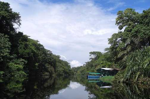 The beautiful canals in Tortuguero