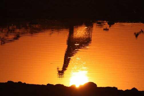 Waterhole sunset