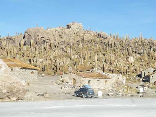 Salt Flats - Isla Pescado