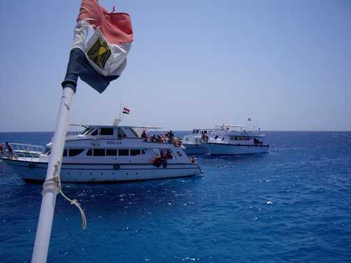Red Sea Boat Excursion