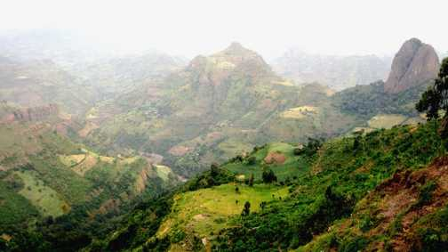 Simien lowlands