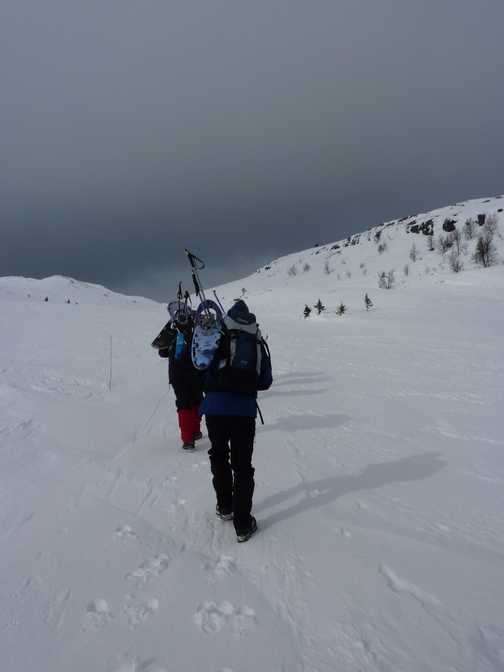 Going up to Svinslaberge