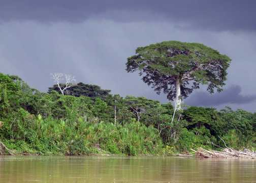 The clouds gather and the rain shows-up whilst travel down the Napo River.