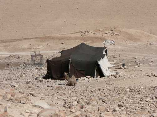 Bedouin camp and transport