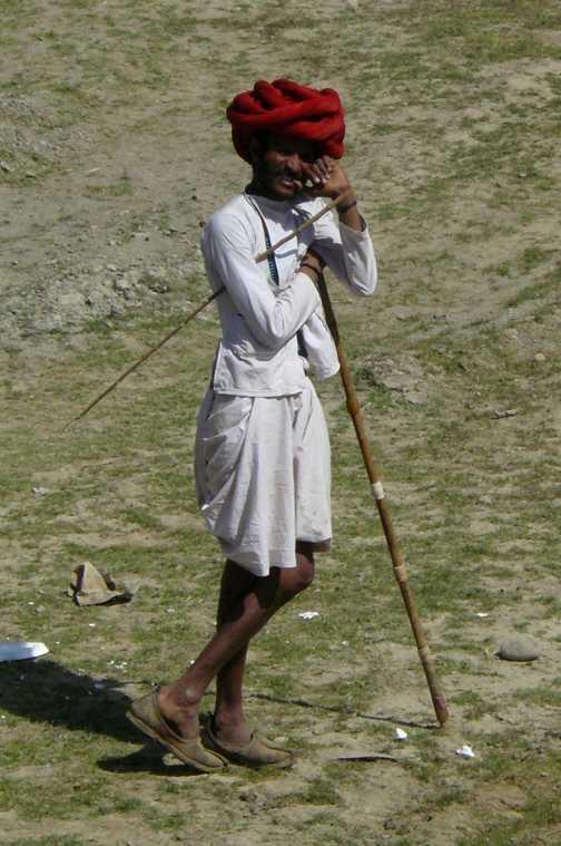 Shepherd, Udaipur