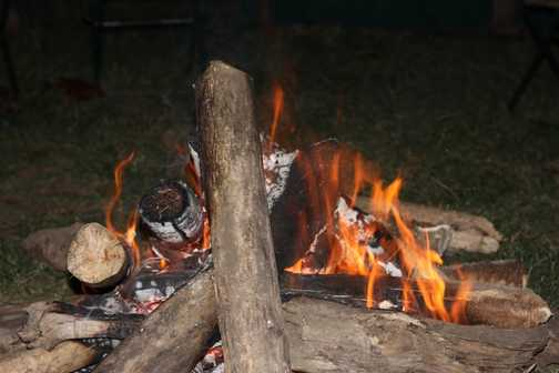 Even the buffalo wanted to sit round our campfire.