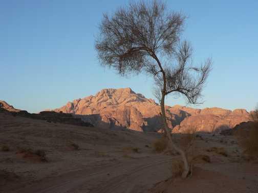 Wadi Rum still