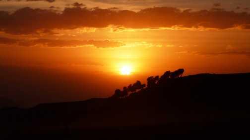 Geech sunset