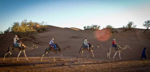 Camel ride_M'hamid_04