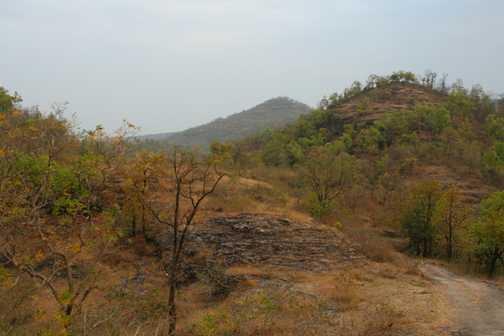 The landscape of Bandhavgarh NP