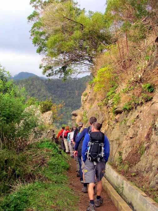 Levada do Canical Walk