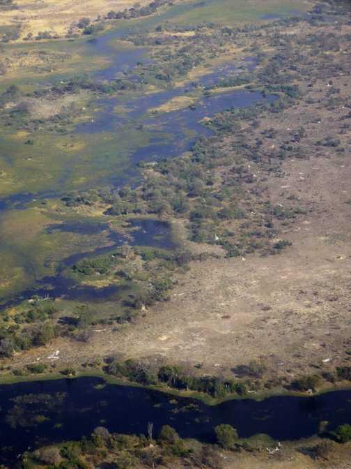 Okavango aerial view